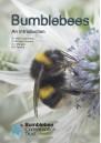 Bumblebees: An Introduction