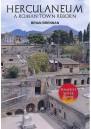 Herculaneum A Roman Town Reborn